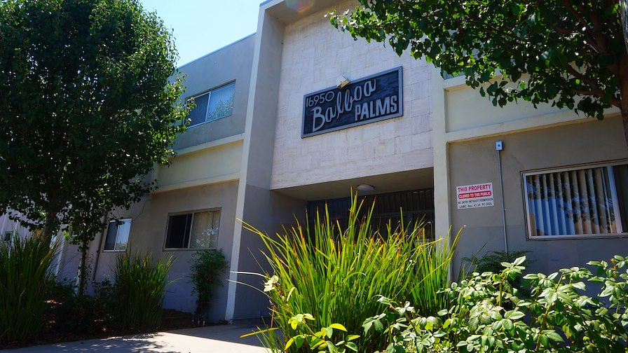 Balboa Palms