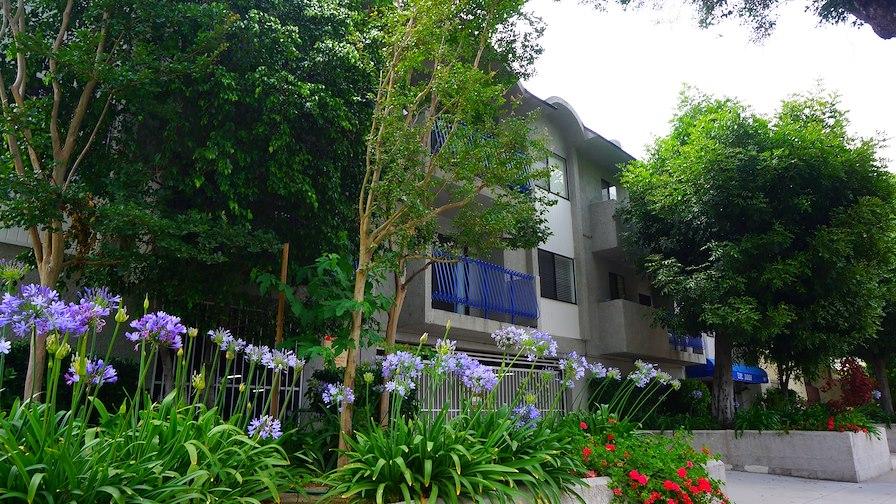 Jad's Garden