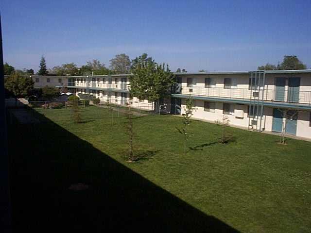 Olive Tree Apartments